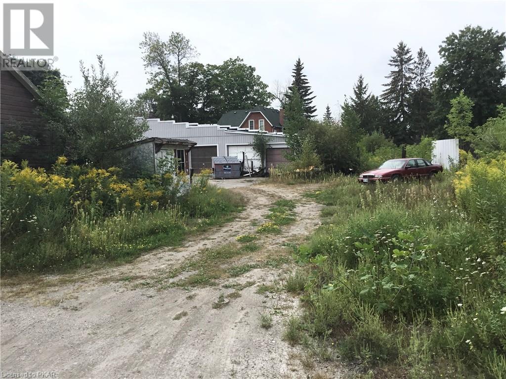 73 King Street E, Omemee, Ontario  K0L 2W0 - Photo 7 - 40158438